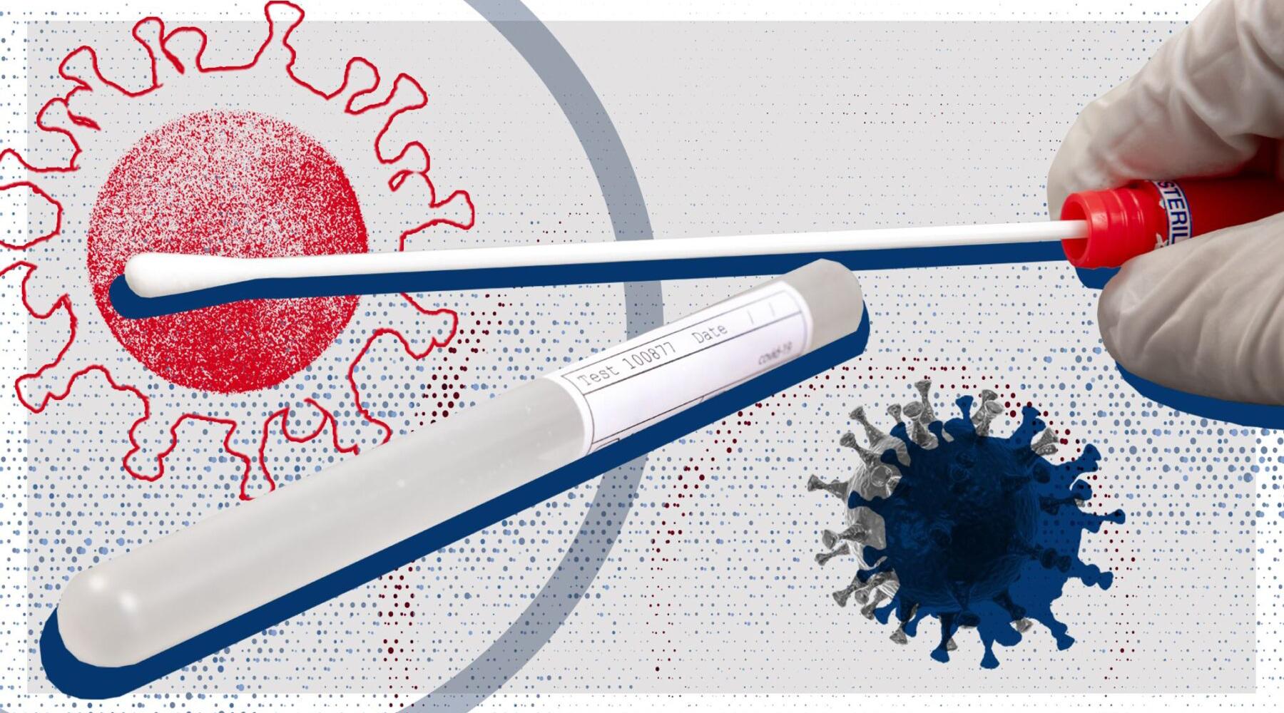 variante-inglese,-l'izs-puglia-e-basilicata-continua-l'attivita-di-sequenziamento-genomico-di-sars-cov2
