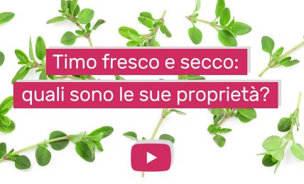 proprieta-e-benefici-del-timo,-molto-piu-di-un'erba-aromatica:-l'intervista-alla-nutrizionista