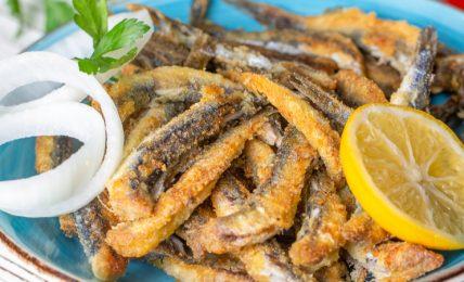 ricette-con-le-alici:-10-spunti-per-portare-in-tavola-un-pesce-ricco-di-virtu