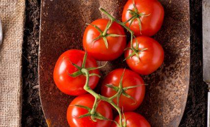"""""""dal-produttore-al-consumatore"""":-la-strategia-farm-to-fork-ue-cambiera-il-modo-di-produrre-e-di-mangiare?"""