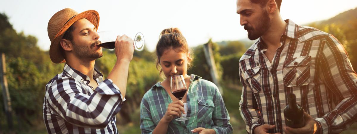 il-trend-dell'estate-italiana-e-la-#winecation:-intervista-al-presidente-del-movimento-turismo-del-vino