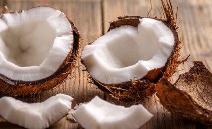antiossidanti-e-ricche-di-minerali:-le-proprieta-delle-noci-di-cocco