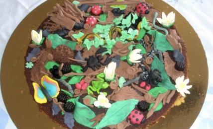 torta-sottobosco-allegra-e-simpatica,-da-preparare-divertendosi-insieme-ai-bambini
