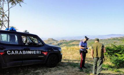 ferrandina-(mt):-battuta-di-caccia-illegale-colpo-vagante-ferisce-cacciatore-59enne.-i-carabinieri-denunciano-5-persone